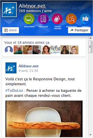 Page Plugin Facebook