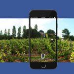 Facebook 360 vignobles bordeaux vins